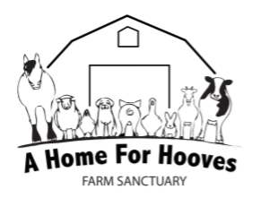 Home for Hooves
